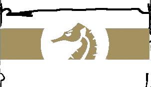 Antrophia Rederi logo gold